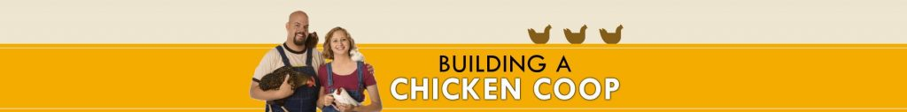 learn to build a chicken coup